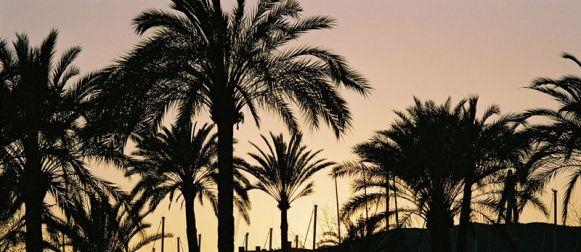 ¿Quieres saber porque Mallorca es la número 1?